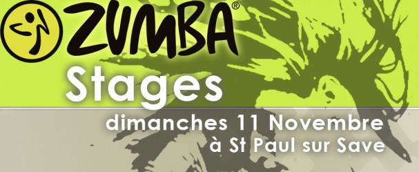 Tract_Saint-paul_zumba-11-nov-2012-bando