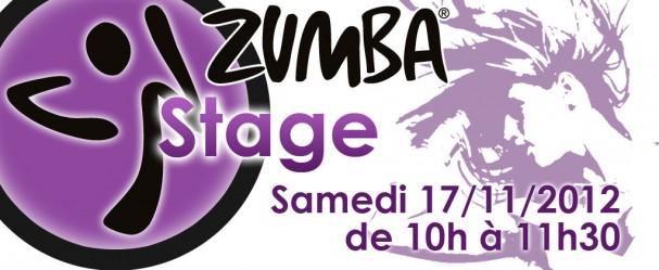 stage-savenes-17-nov-bando
