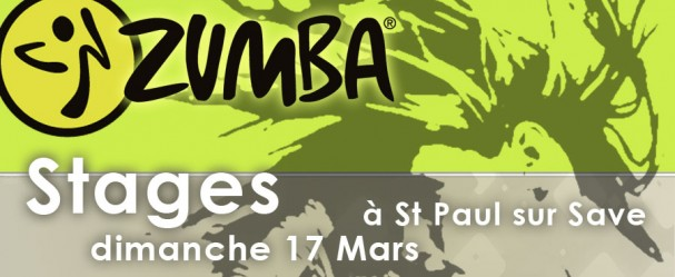 stage zumba saint paul sur save