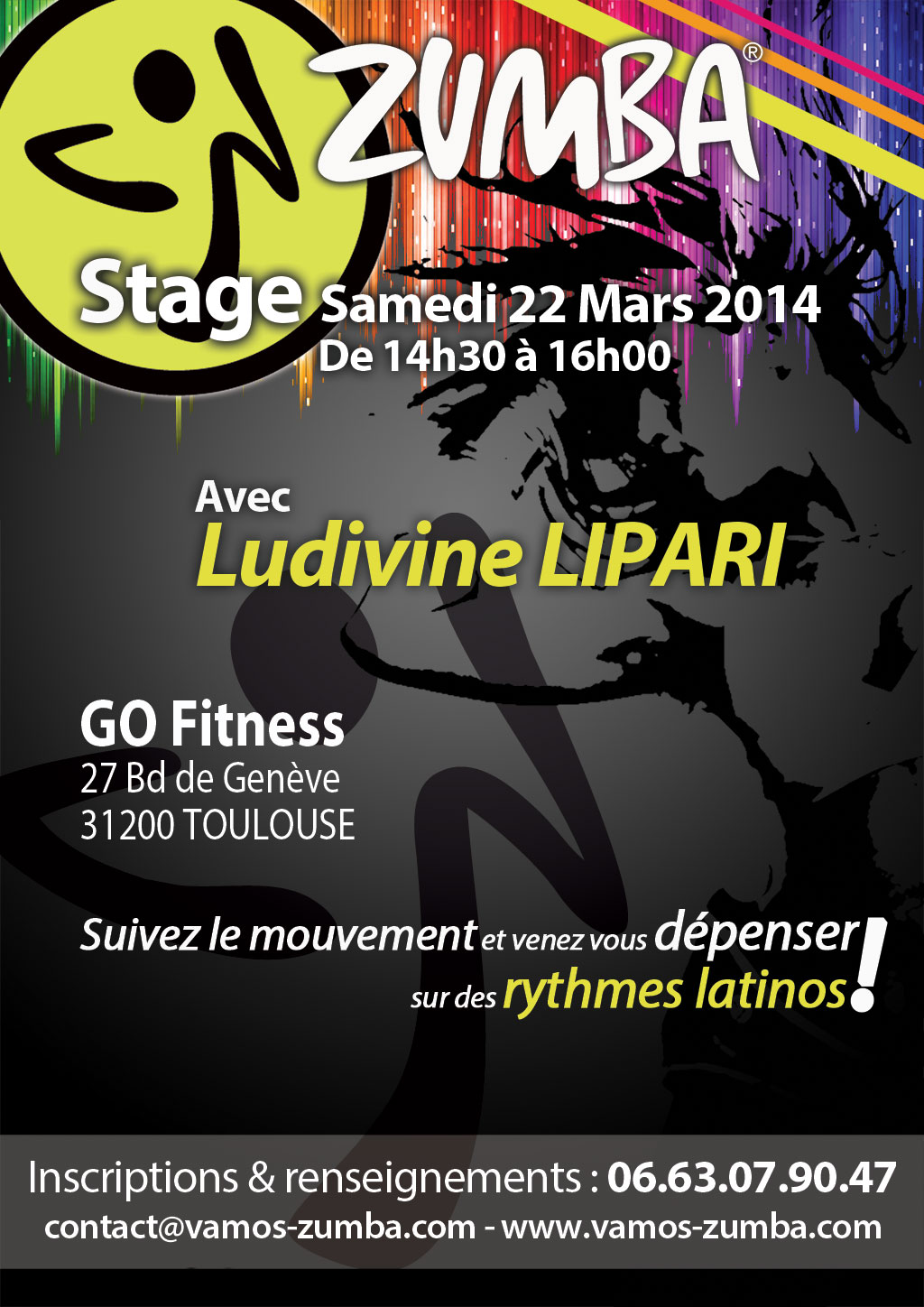 stage zumba le samedi 22 mars 2014 chez go fitness cours zumba toulouse vamos. Black Bedroom Furniture Sets. Home Design Ideas