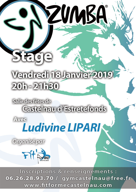 Stage Zumba le Vendredi 18 Janvier 2019 à Castelnau D Estretefonds (31) 75606b05231